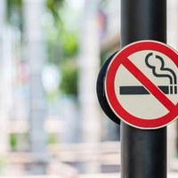 Die rauchfreie Schule